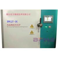 微波高溫爐 (BWG2T-01)